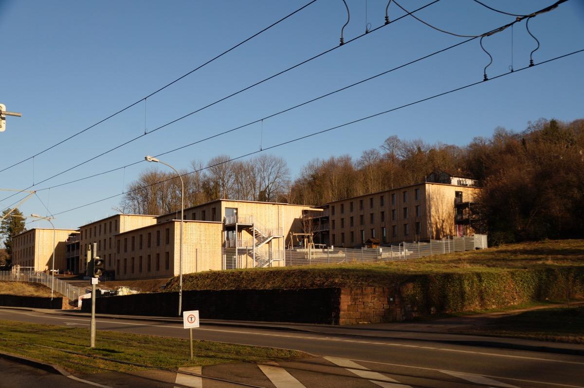 Wohnungsbau in Freiburg: Holzbau-Wohnmodule